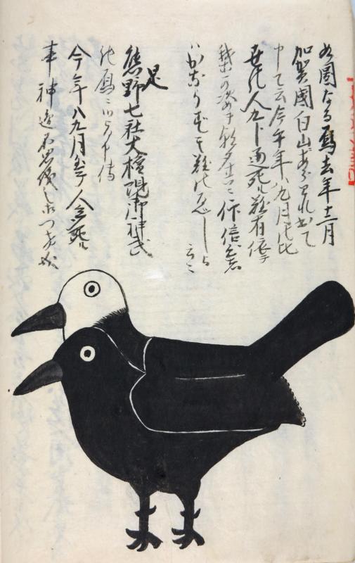 ヨゲンノトリの手描き京扇子2020・2種|疫病退散!(山梨県立博物所蔵・無断使用不可)