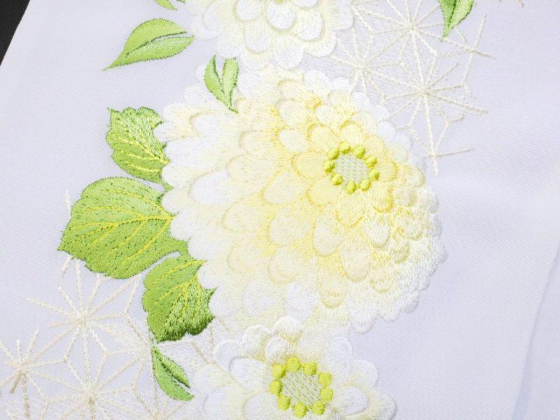 刺繍半衿 振袖 訪問着 菊
